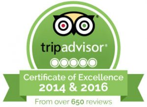 trip-advisor-recommendation the roman foodie