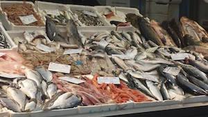 fish-Markets in Rome