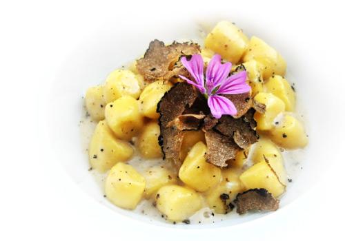 gnocchi mushrooms tipical italian food truffle